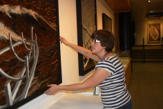 Jane Edmundson puts the final touches on Darcy Logan's new exhibit. Photo By Richard Amery